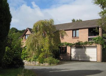 Thumbnail 4 bed detached house for sale in Dan Y Wern, Pwllgloyw, Brecon