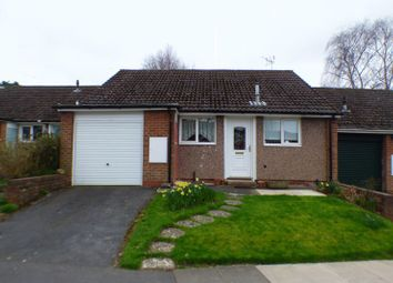 Thumbnail 2 bed terraced bungalow for sale in Sellywood Road, Bournville, Birmingham