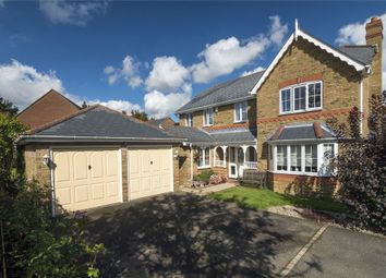 Thumbnail 4 bed detached house to rent in Cuckoo Way, Great Notley, Braintree