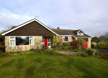 Thumbnail 4 bed detached house for sale in Ashbourne Road, Turnditch, Belper
