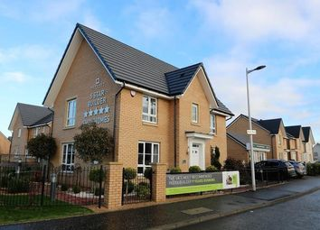 Thumbnail 4 bed detached house to rent in Brock Place, Motherwell