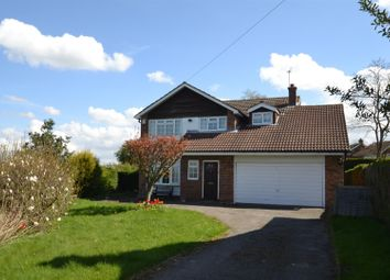 Thumbnail 4 bed detached house to rent in Greengales Lane, Wheldrake, York