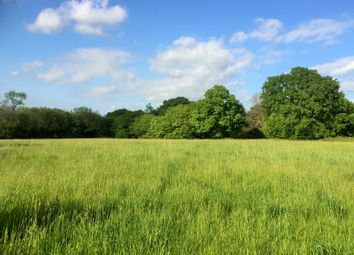 Thumbnail Land for sale in Chitcombe Road, Broad Oak