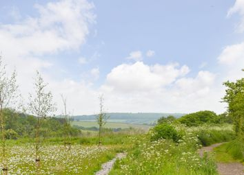 Thumbnail 4 bedroom detached house for sale in Spithead Business Centre, Newport Road, Sandown
