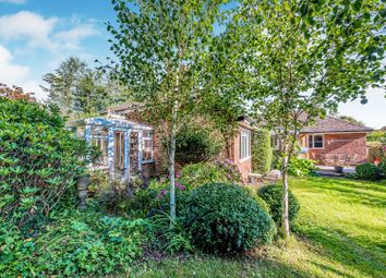 Thumbnail 3 bed detached bungalow for sale in The Croft, Petworth
