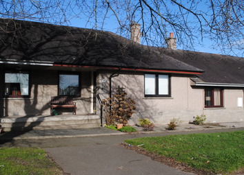 Thumbnail 1 bed bungalow to rent in 18 Elm Grove, Arbroath