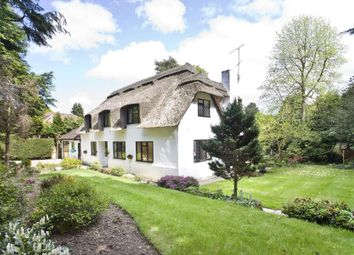 Thumbnail 5 bed cottage to rent in Fireball Hill, Ascot