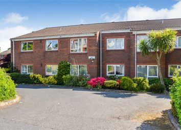 Thumbnail 2 bed flat for sale in Windmill Road, Bangor, County Down