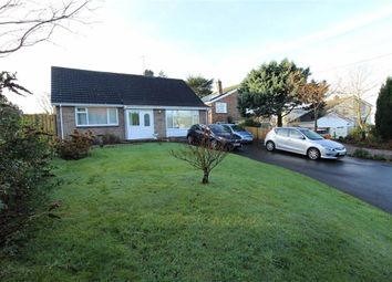 Thumbnail 4 bed detached bungalow for sale in Rhydyfelin, Aberystwyth