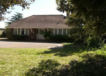 Thumbnail 3 bed bungalow to rent in London Road, Twyford, Reading