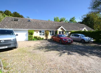 Thumbnail 5 bed bungalow for sale in The Green, Flowton, Ipswich