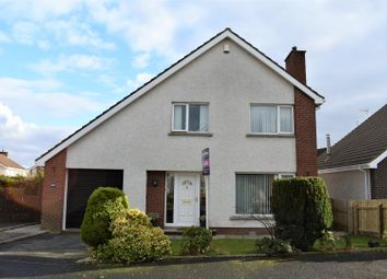 Thumbnail 4 bed detached house for sale in The Glade, Portadown