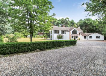 Thumbnail 6 bed detached house for sale in Adbury Holt, Newtown, Newbury