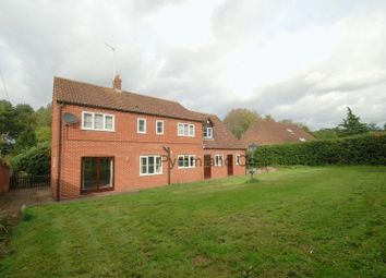 Thumbnail 4 bed detached house to rent in Lower Street, Salhouse, Norwich