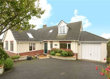Thumbnail 4 bed detached bungalow for sale in Gate Close, Hawkchurch, Axminster