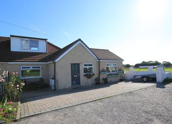 Thumbnail 3 bed bungalow for sale in Madison Avenue, Bolton Le Sands, Carnforth