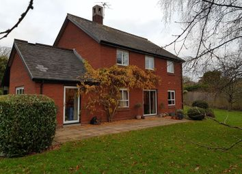 Thumbnail 4 bed detached house to rent in Church Street, Crediton