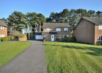 Thumbnail 4 bed detached house for sale in Squires Walk, Abington, Northampton