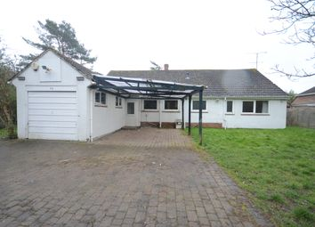 Thumbnail 4 bed bungalow to rent in Twyford Orchard, London Road, Ruscombe, Reading
