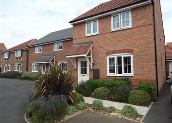 Thumbnail 3 bed detached house to rent in Tacitus Way, Lincoln
