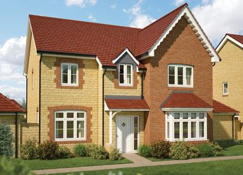 "Thumbnail 5 bed detached house for sale in ""The Birch"" at Gainsborough, Milborne Port, Sherborne"