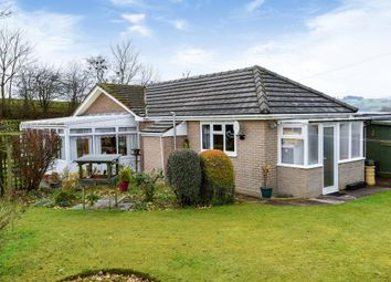 Thumbnail 2 bedroom detached bungalow for sale in Dolau, Llandrindod Wells