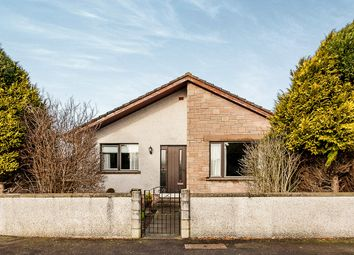 Thumbnail 3 bed bungalow for sale in Braoch Road, Montrose
