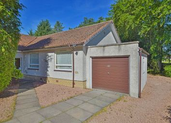 Thumbnail 3 bed bungalow for sale in 74 Moyness Park Drive, Blairgowrie