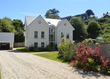 Thumbnail 5 bedroom detached house for sale in Newton Villas, Mumbles, Swansea
