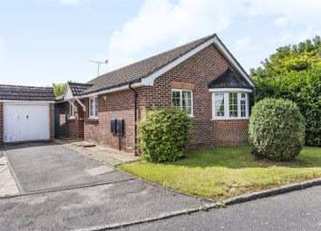 3 bed detached bungalow for sale in The Vines, Wokingham, Berkshire RG41