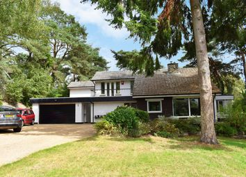 Egmont Drive, Ringwood BH24. 4 bed detached house