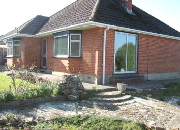 Thumbnail 2 bed detached bungalow to rent in Wanderwell, Bridport