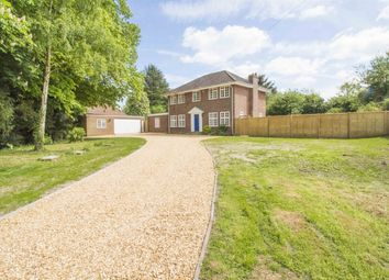 Thumbnail 4 bed detached house for sale in Wingate Lane, Long Sutton, Hook