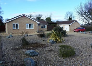 Thumbnail 3 bed detached bungalow for sale in Warwick Road, Peterborough, Cambridgeshire