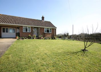 Thumbnail 2 bedroom semi-detached bungalow for sale in Wreningham, Norwich