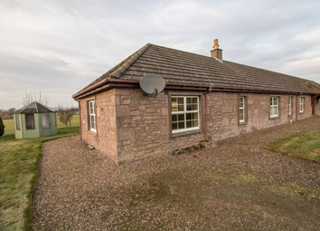 Thumbnail 3 bedroom semi-detached house to rent in Cottage 3 Over Buttergask Farm, Burrleton
