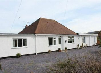 Thumbnail 3 bedroom semi-detached bungalow to rent in Gamfa Wen Road, Talacre, Holywell