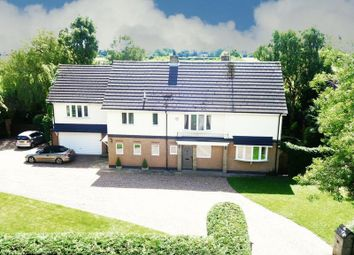 Thumbnail 4 bed detached house for sale in Great Gutter Lane, Willerby, Hull