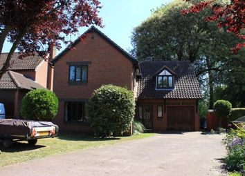 Thumbnail 5 bedroom detached house for sale in Bradwell, Great Yarmouth, Norfolk