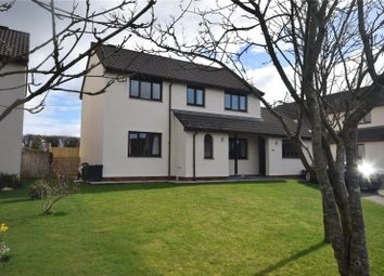 Thumbnail 4 bed detached house for sale in Hoopers Way, Torrington
