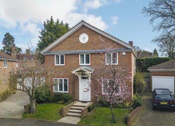 Thumbnail 4 bed property to rent in Rosslyn Park, Weybridge, Surrey