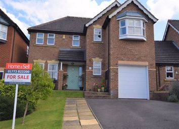 Thumbnail 4 bed detached house for sale in High Grove, Belper