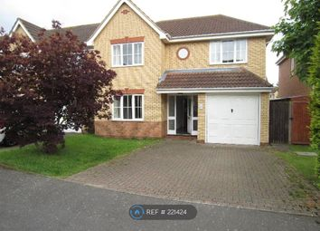 Thumbnail 4 bedroom detached house to rent in Whitegate Close, Cambridge