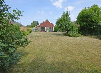 Thumbnail 3 bed detached bungalow for sale in Thorn Lane, Four Marks, Alton, Hampshire