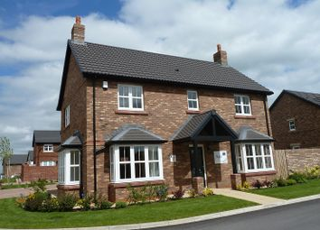 Thumbnail 4 bed detached house to rent in Charlton Way, Crindledyke Farm, Kingstown, Carlisle
