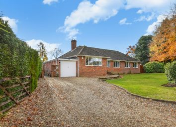 Thumbnail 4 bedroom detached bungalow for sale in Ball Hill, Newbury