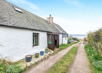 Thumbnail 3 bed semi-detached house for sale in Jemimaville, Dingwall