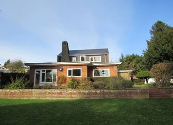 Thumbnail 4 bed property to rent in St. Marys Lane, Louth