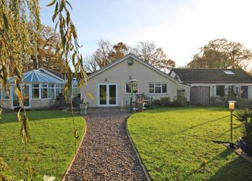Thumbnail 5 bed detached bungalow for sale in Gore Road, New Milton