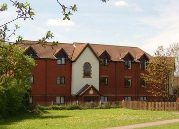 Thumbnail Studio to rent in Pascal Way, Letchworth Garden City